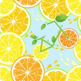 Seamless pattern of yellow lemon slices Royalty Free Stock Image