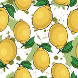 Seamless pattern with yellow lemons -  illustration Royalty Free Stock Photo