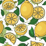 Seamless pattern with yellow lemons -  illustration Royalty Free Stock Image