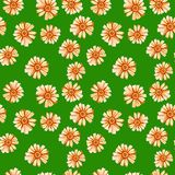 Seamless pattern with yellow orange daisies royalty free stock photography