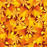 Seamless pattern with yellow, orange, red autumn leaves Stock Photography