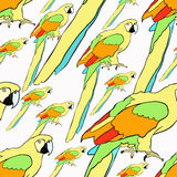 Seamless pattern yellow parrot the Caribbean.. Seamless pattern yellow parrot sits the Caribbean vector illustration Stock Images