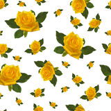 Seamless pattern yellow rose Royalty Free Stock Photo