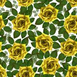 Seamless pattern with yellow roses. Beautiful realistic flowers with leaves. Photorealixtic rose bud, clean vector high detailed royalty free stock photography