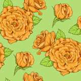 Seamless pattern with yellow roses Royalty Free Stock Image