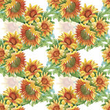 Seamless pattern with yellow sunflowers painted in watercolor on a white background Royalty Free Stock Photo