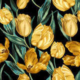 Seamless pattern of yellow tulips Royalty Free Stock Image
