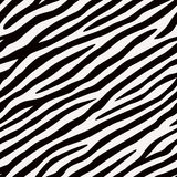 Seamless pattern Zebra. Black and white colors. Royalty Free Stock Images