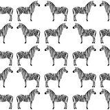 Seamless pattern with zebra silhouette stock image