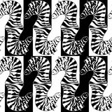 Seamless pattern of zebras Stock Image