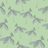Seamless patternd with dragonflies Royalty Free Stock Image