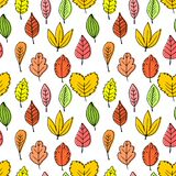 Seamless patterns of autumn leaves. Elegant and beautiful leaflets and plant elements. royalty free illustration