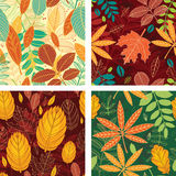 Seamless patterns with autumn leaves Stock Photos