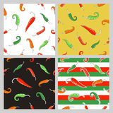 Seamless patterns with chili peppers. Stock Images