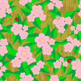 Seamless patterns with flowers. Royalty Free Stock Images