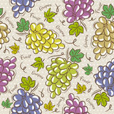 Seamless Patterns with grapes Stock Photo