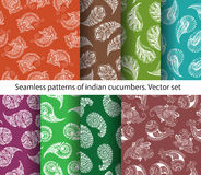 Seamless patterns of indian cucumbers vector illustration