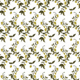 Seamless patterns made from branches of green olives. Royalty Free Stock Images