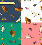 Seamless Patterns with Pets. Stock Photos