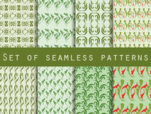 Seamless patterns with plants and flowers. Set of seamless natur Royalty Free Stock Photography