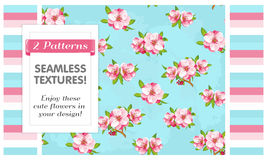 2 Seamless patterns. Sakura flowers. VECTOR eps 10. Seamless patterns of Sakura blossom, Japanese flowering cherry in a various arranged. It can be used for Stock Image