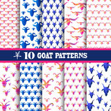 Seamless patterns set. Elegant seamless patterns with decorative goat heads, design elements. Can be used invitations, greeting cards, scrapbooking, print, gift stock illustration