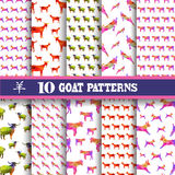 Seamless patterns set. Elegant seamless patterns with decorative goats, design elements. Can be used for invitations, greeting cards, scrapbooking, print, gift vector illustration