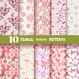 Seamless patterns. Set of 10 elegant seamless patterns with hand drawn decorative flowers, design elements. Beautiful floral backgrounds. Floral patterns for Royalty Free Stock Photo