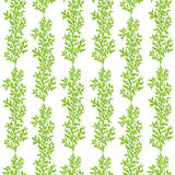Seamless patterns wich sprigs Royalty Free Stock Photography