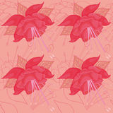 Seamless peach background with pink flowers Stock Images