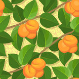 Seamless peach on branches background pattern Royalty Free Stock Image