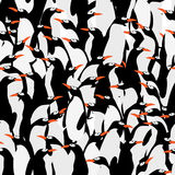 Seamless penguins pattern Stock Image