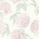 Seamless peony flowers background. Royalty Free Stock Photos
