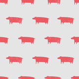 Seamless pig pattern Stock Images