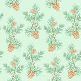 Seamless pine cone. Seamless pattern of pine branches and cones on blue background Royalty Free Stock Images