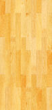 Seamless pine floor texture Stock Photography