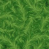 Seamless Pine Pattern Royalty Free Stock Photo