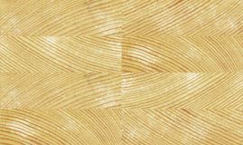 Seamless pine texture Stock Photography