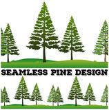 Seamless pine trees on the field Royalty Free Stock Photos