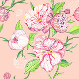 Seamless pink background with peony flowers vector illustration