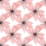 Seamless pink floral pattern on white Royalty Free Stock Photography