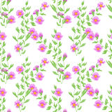 Seamless pink flowers pattern background Stock Image