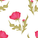 Seamless pink flowers pattern on white Stock Images