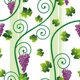 Seamless pink grape pattern Stock Images