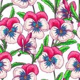Seamless pink pansies Stock Image