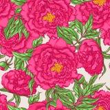 Seamless pink peonies Stock Photos
