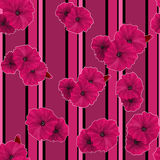 Seamless pink poppy flowers pattern background Royalty Free Stock Image