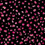 Seamless Pink Rose Petals on Black. Repeatable, floating pink rose petals, studio photographed and isolated on absolute black Stock Photo