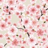 Seamless pink Sakura flowering cherry. EPS 10 Royalty Free Stock Images
