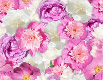 SEAMLESS pink white flower texture. Peony pattern. Royalty Free Stock Photo